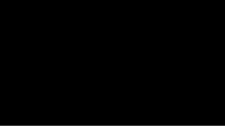 DS & Durga Client Logo Black